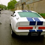 Behind The Scenes - Mustang GT500CR: Red Hook, Brooklyn