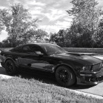 Roush Mustang - East River Rd: Minneapolis, MN